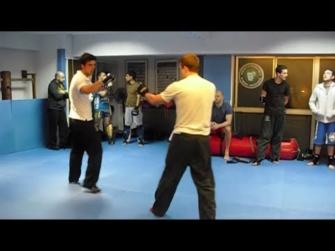 Wing Chun vs MMA & Krav Maga - Kung Fu Tested