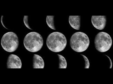 Moon Rituals And When To Plant Seeds