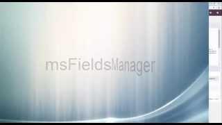 msFieldsManager