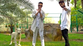 Adam Saleh Waynak Ft Faydee Official Music Video