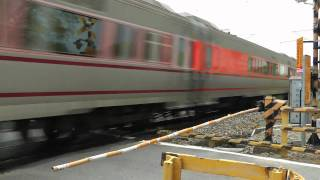 [HD] The Taiwan TRA Tzu-Chiang Train E1000 pass the Tangchang Road level crossing