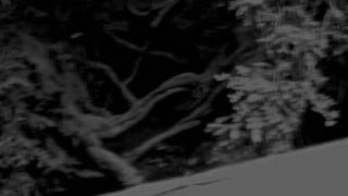 "Cult of Luna - ""Heartbeats"""