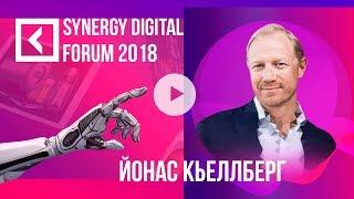 Йонас Кьеллберг | Стратегия онлайн-продаж | SYNERGY DIGITAL FORUM 2018 | Университет СИНЕРГИЯ