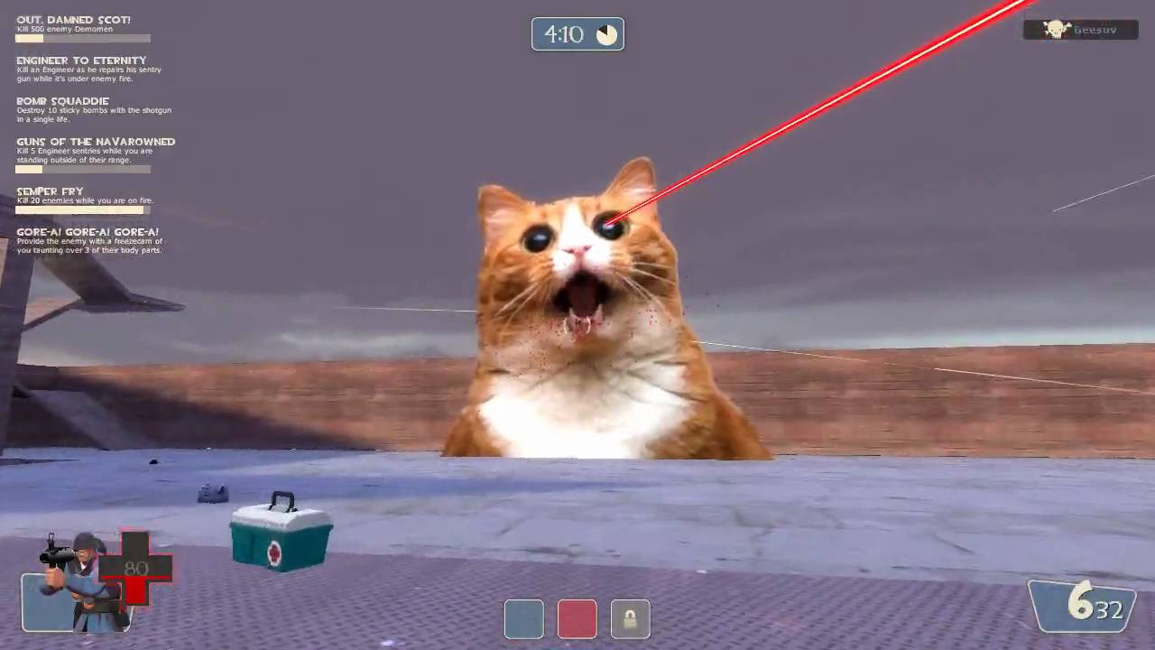 Team Fortress 2 Laser Death Cat Youtube