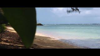 iPhone X 4K Cinematic Video Footage (Kauai)