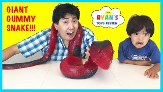 world s largest gummy snake candy challenge 26lb giant gummy worm python ryan toysreview