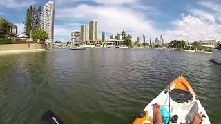Gold Coast Fishing Mangrove Jack Using Zman Diezel Minnowz Dragon Kayak