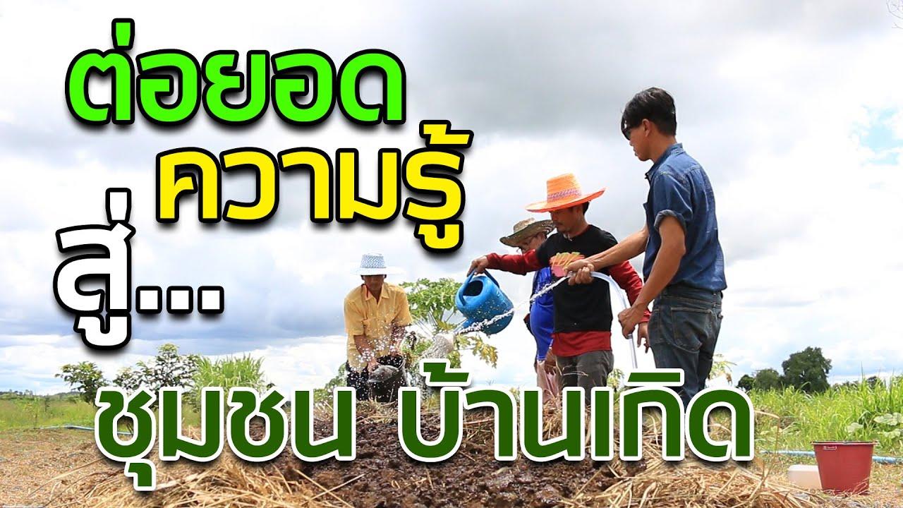 ทำดินจากใบลำใย หญ้า | คนรักษ์ป่า ep 112