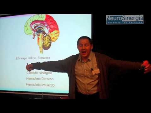 coaching-pnl-|-aptitud-|-programación-neurolinguistica-|-conferencias-pnl-6-de-7