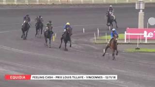 Vidéo de la course PMU PRIX LOUIS TILLAYE