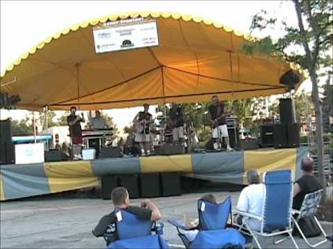 Average Joe Band Covers Brian Wilson Tinley Park Music in the Plaza