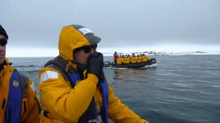 A Zodiac excursion in Svalbard (Arctic)