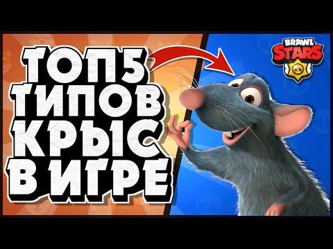 Топ 5 типов крыс в игре Бравл Старс