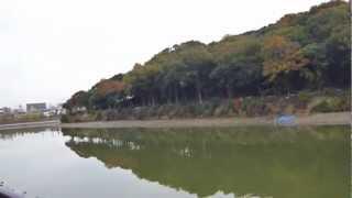 堺市と宮内庁で平成24年10月から同時に調査しているニサンダイ古墳の現...
