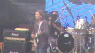 "The Lemonheads performing ""alison"
