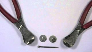 Nails, Teeth & Claws
