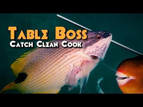 BOSS KATSU MUSUBI - Catch And Cook - Spearfishing Hawaii - Special Guest: Shaka Musubis