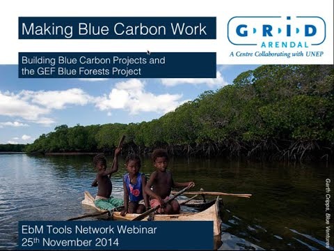 Making Blue Carbon Work: Building Blue Carbon Projects and the GEF Blue Forests Project