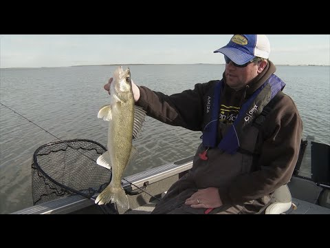 Devils Lake Slip Bobber Walleye