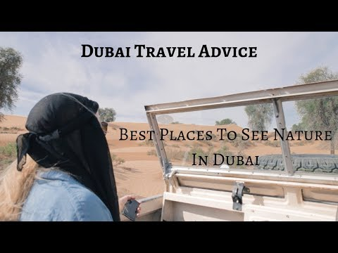Best Places To Experience Nature In Dubai