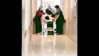 ギプスを巻くため手術室に入ったCane Corso妹が出てきた! 人工呼吸器は...