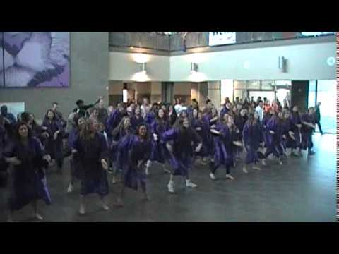 College Station High School Class of 2015 Flash Mob