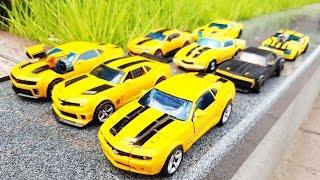 Transformers Bumblebee 8 Vehicle Transformation Car Toys 트랜스포머 범블비 8대 자동차 장난감 로봇 변신 동영상