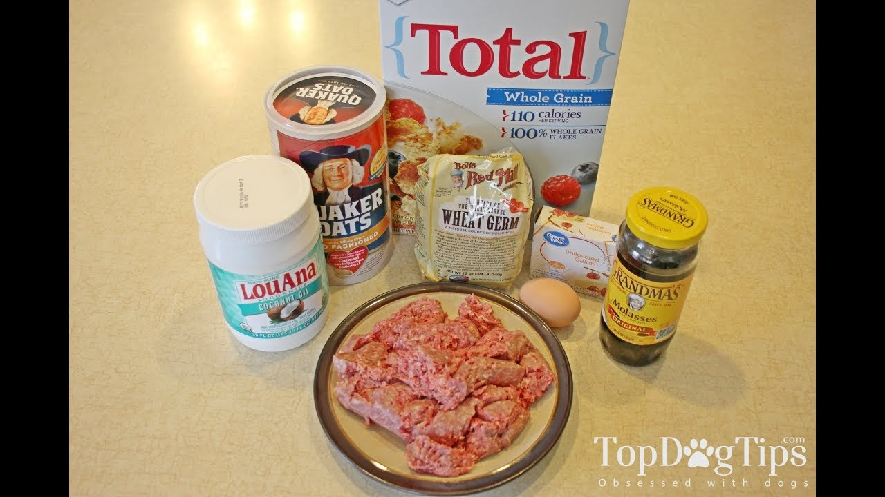 Dog food recipes to lose weight