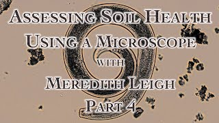 Assessing Soil Health Using a Microscope with Meredith Leigh Part 4