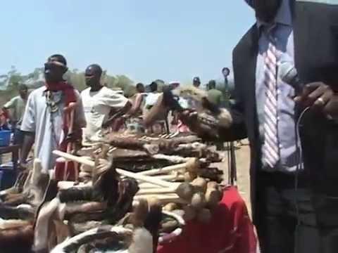 Ngoni Culture