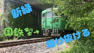 【草津線】新緑を駆け抜ける113系 国鉄型車両