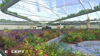 Polydome Sustainable Agriculture