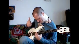 """Make you feel better"" - Red hot Chili Peppers slap bass cover"