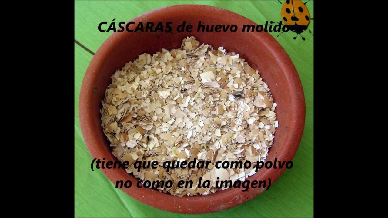 F cil alimento para perros gatos croquetas y en pasta for De donde sacan el marmol