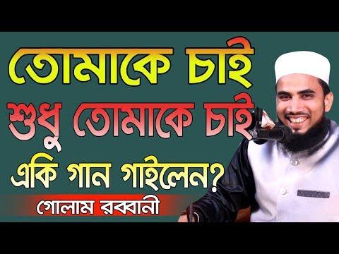 তোমাকে চাই শুধু তোমাকে চাই একি গান গাইলেন গোলাম রব্বানী Golam Rabbani Waz 2019