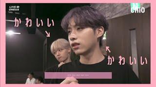 【ONEUS:日本語】ジュヌンちゃんの可愛さを知ってほしい【ファヌン・シオン】