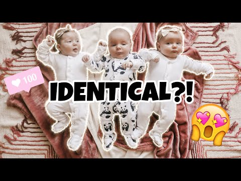Are the TRIPLETS Identical or Fraternal? DNA Results Confirmed
