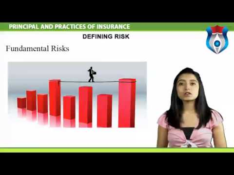 PRINCIPAL AND PRACTICES OF INSURANCE