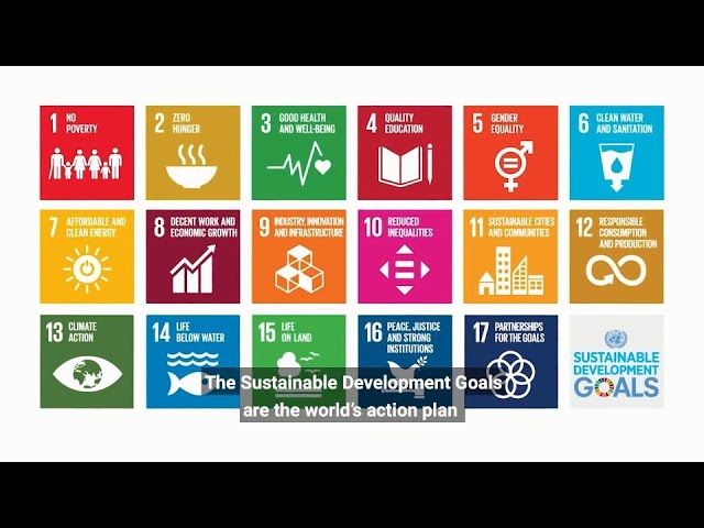 UN Chief on Decade of Action for the Sustainable Development Goals