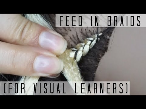how-to-do-feed-in-braids- -for-visual-learners