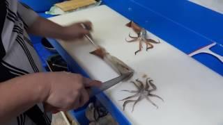 요리사 오징어 손질 (어부린수산)