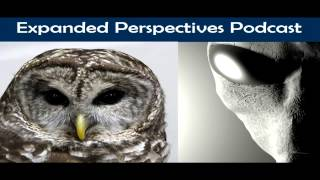 Real MIB Encounters/Owls and Abductees