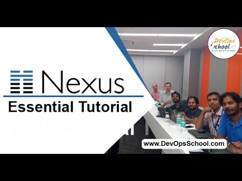 nexus-fundamental-tutorial-for-beginners-for-demo-2020-by-devopsschool