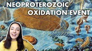 The Neoproterozoic Oxygenation Event (NOE) | GEO GIRL