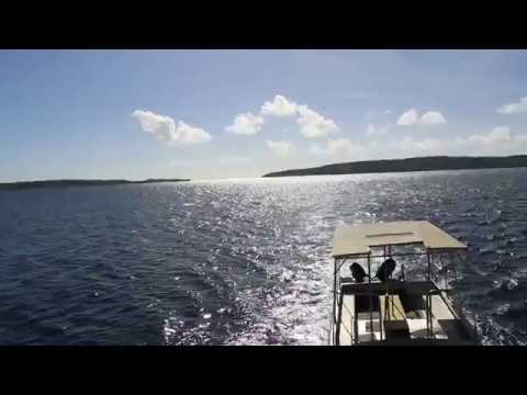 Pacific Jewel excursion, Cruising back from Tranquility Island Turtle Rookery