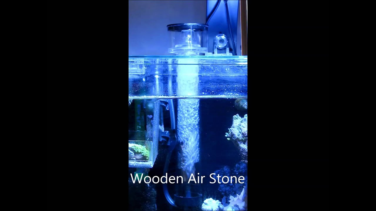Wooden Air Stone vs Ceramic Air Diffuser - YouTube