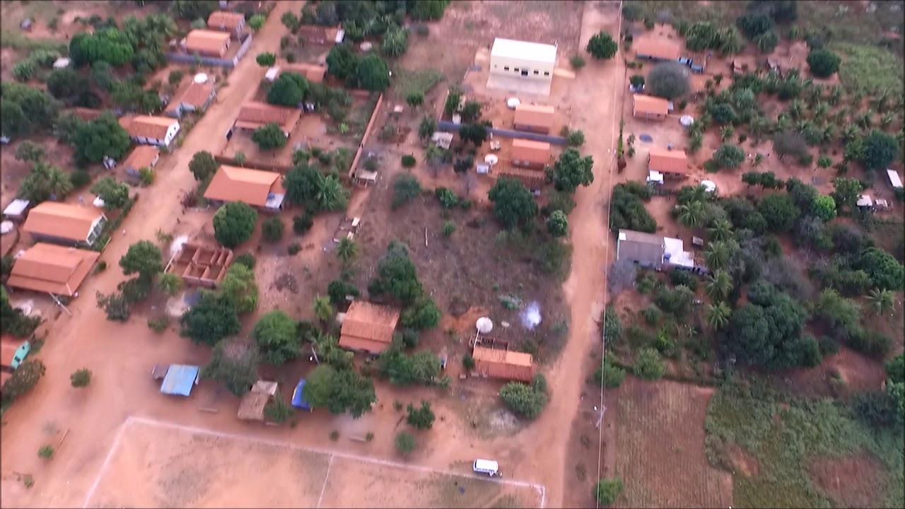 Jatobá Maranhão fonte: i.ytimg.com