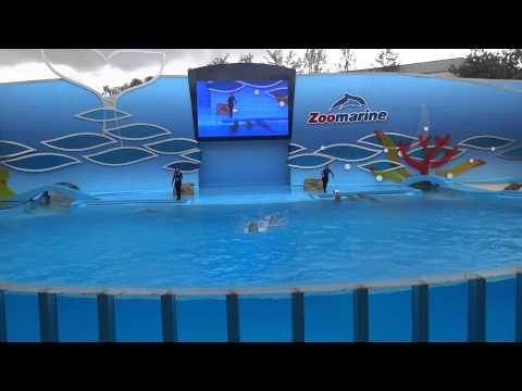 Zoomarine - Dolphin Show - Portugal 2014