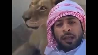 Dubai Prince Playing With His Pet Lions