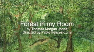 Forest in my room  demo reel